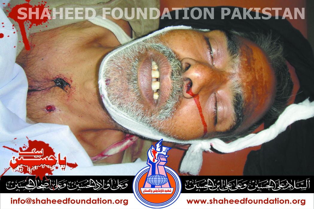Shaheed Ali Hassan Naqvi