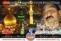 Shaheed Aalam Raza MWM