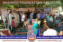 SFP Bakra Mandi Sialkot & Gujranwala 2016