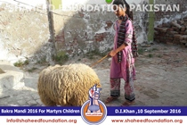 SFP Bakra Mandi D.I.Khan 2016