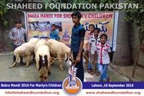 SFP Bakra Mandi Lahore 2016