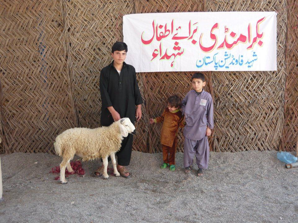 Quetta Bakra Mandi