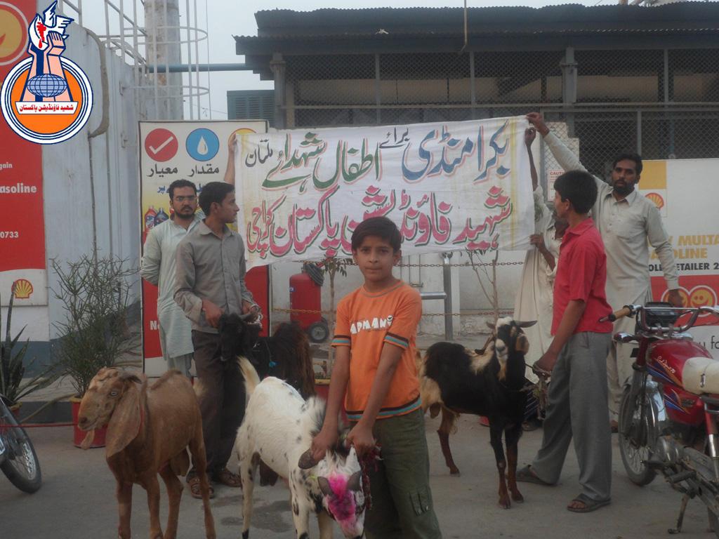 Bakra Mandi Multan